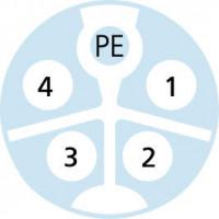 Polbilder-PK-AM12K5.244-5-PK-AM12S5.244/S5015
